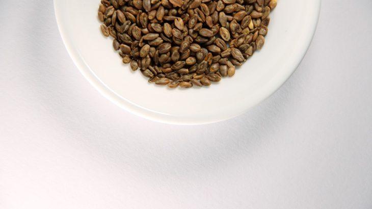 もち麦をつかったコンビニおにぎりやレトルト・冷凍食品などまとめ!便秘解消・ダイエット・美容に効果あり!